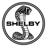 Shelby for sale on GoCars