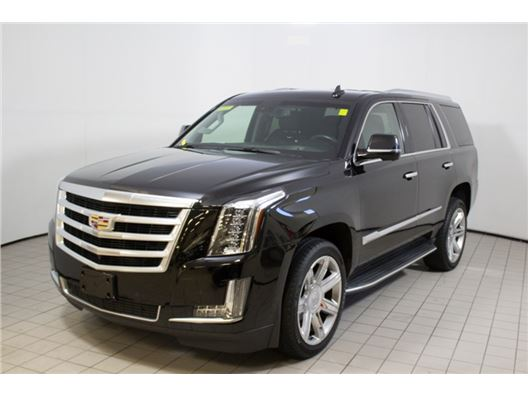 2015 Cadillac Escalade for sale in Norwood, Massachusetts 02062