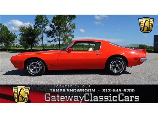 1973 Pontiac Firebird for sale in Ruskin, Florida 33570
