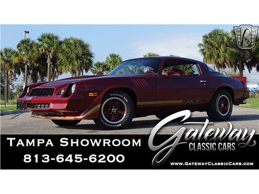 1979 Chevrolet Camaro for sale in Ruskin, Florida 33570