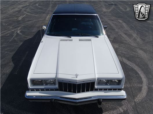 1984 Dodge Diplomat for sale in Lake Mary, Florida 32746