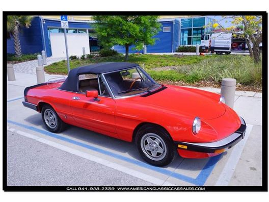 1984 Alfa Romeo Spider for sale in Sarasota, Florida 34232