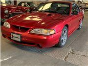 1998 Ford Mustang SVT Cobra for sale in Sarasota, Florida 34232