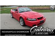 2004 Ford Cobra for sale in Indianapolis, Indiana 46268